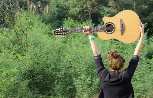 guitar fc (12)