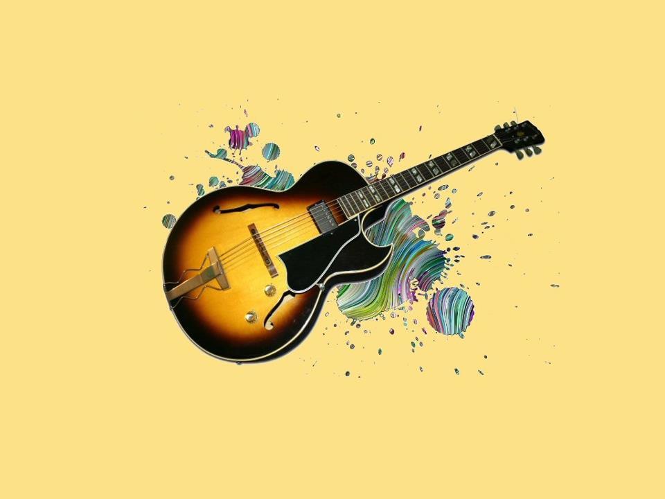 hinh anh guitar doc dao (8)