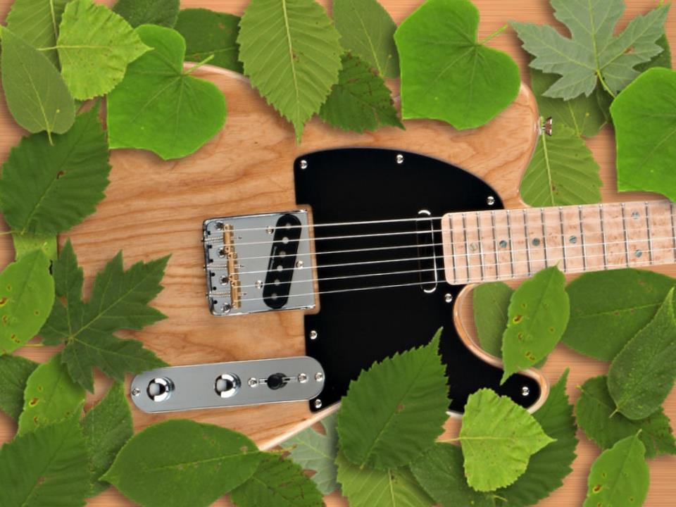 hinh anh guitar doc dao (85)